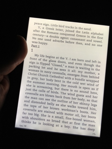Is this love that I'm feeling? The Kindle Paperwhite