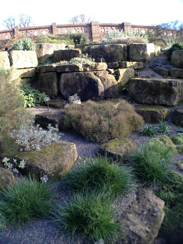 kew-gardens-3