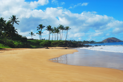 http://www.mauiphotographybyjen.com/best-beaches-of-maui