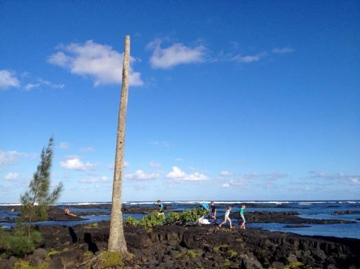 big-island-8