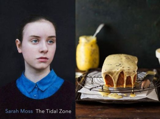 the-tidal-zone-sarah-moss